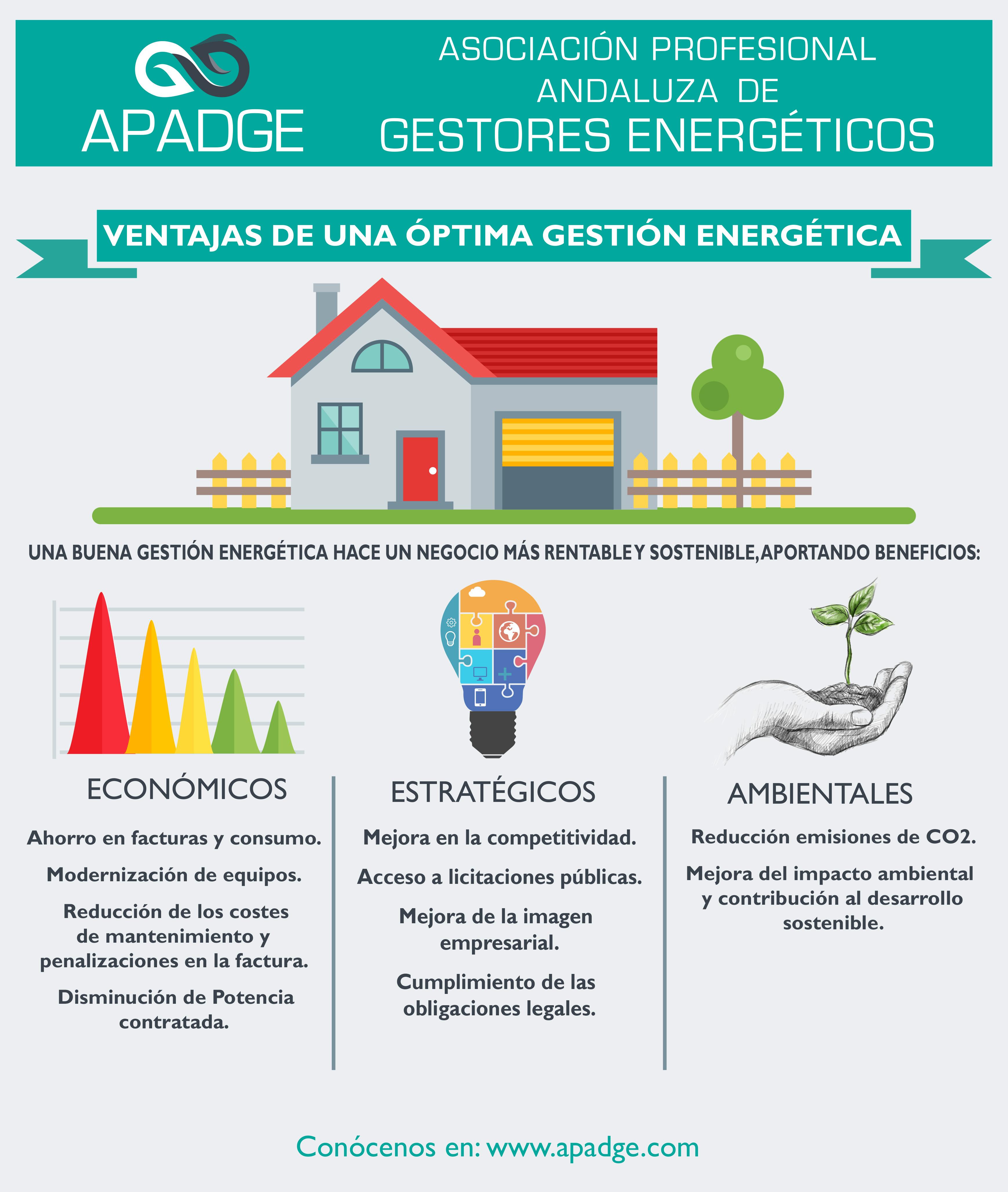 Infografia_VENTAJAS_Ges_Ener